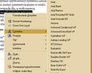 Open Office Writer ma mnóstwo funkcji formatyjących